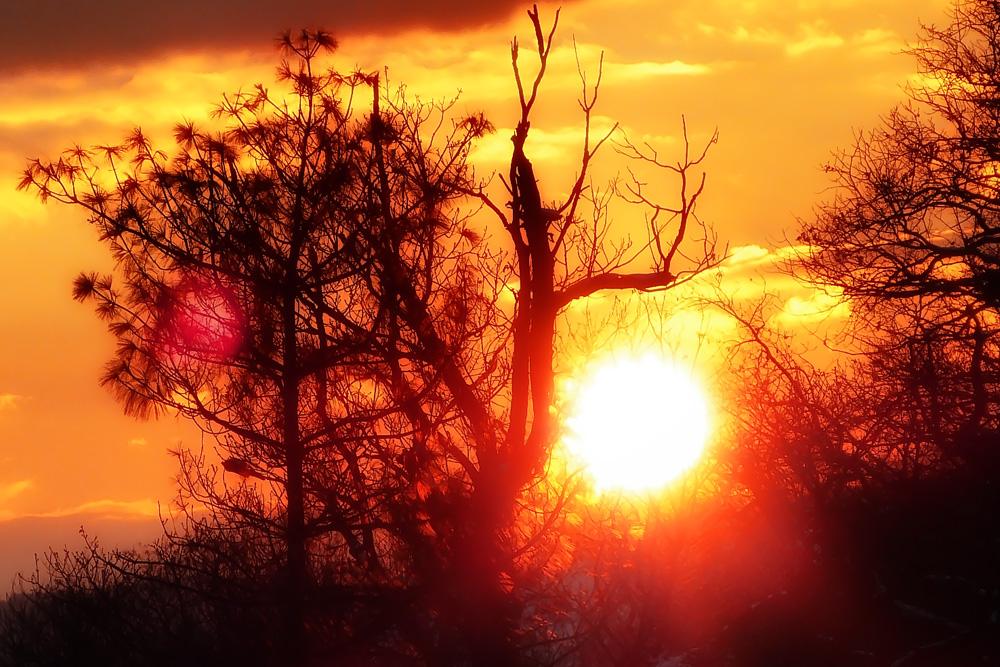 Foto Sonnenaufgang