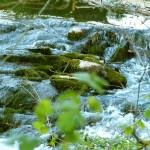 Foto von einem fließenden Bach