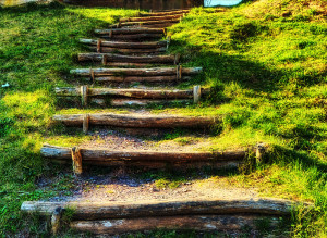 Foto einer Treppe in der Natur