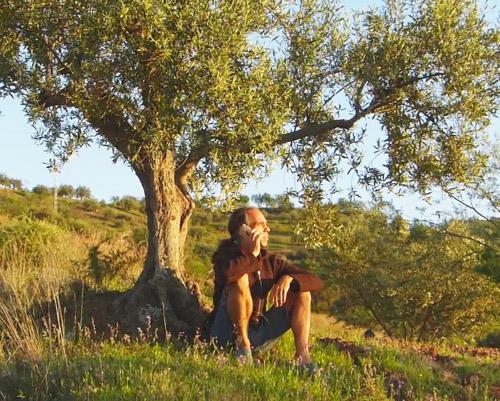 Foto von Soul Guide Michael - unter einem Olivenbaum sitzend. Er telefoniert und schaut in die Ferne. Das ist Energiearbeit der Neuen Zeit: Frei in der Natur lebend Menschen von überall her helfen. Jederzeit.
